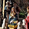 Nativity by Bill Cannon
