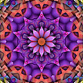 Natural Attributes 15 Square by Wendy J St Christopher