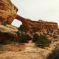 Natural Bridge Southern Utah by Jeff Swan