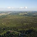 Natural Reserve Of Pinail, Vouneuil Sur by Laurent Salomon