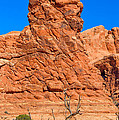 Natural Sculpture by John M Bailey