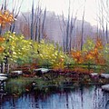Nature Center Pond At Warner Park In Autumn by Janet King