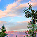 Nature Palette by Kristin Elmquist