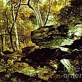 Nature Study Rocks And Trees by Pg Reproductions