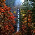 Nature's Color's by Douglas Berg