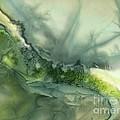 Nature's Flow by Addie Hocynec