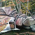Nature's Rock Garden by Jill Ciccone Pike