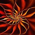 Nautilus Fractalus Fire by Doug Morgan