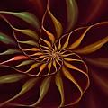 Nautilus Fractalus Tropical by Doug Morgan