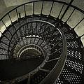 Nautilus Stairway by Daniel Hagerman