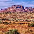 Navajo Nation Series 2 by Bob and Nadine Johnston