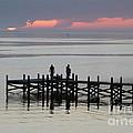 Navarre Beach Sunset Pier 28 by Michelle Powell