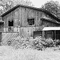 Nc Barn by IMH Photog