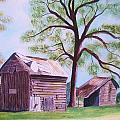 Nc Tobacco Barns by Jill Ciccone Pike