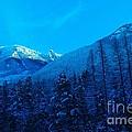Near Fernie British Columbia  by Jeff Swan