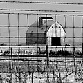 Nearest Neighbor by David Bearden