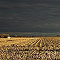 Nebraska Fields by Pics by Jody Adams