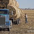 Nebraska Ranch by Jim West