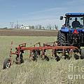 Nebraska Wheat Field by Jerry McElroy