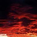 Nebular Sonata by M Pace