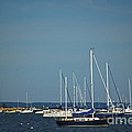 Ned's Point Lighthouse With Sailboats by Amazing Jules