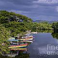 Negril River by John Greim