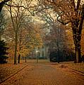 Neighborhood Street In Autumn by Jill Battaglia