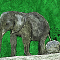 Nelly The Elephant by Pennie  McCracken