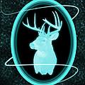 Neon Buck by Shane Bechler