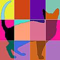 Neon Panels Cat by David G Paul