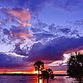Neon Sky by Jody Lane