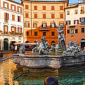 Neptune Fountain On Piazza Navona - Impressions Of Rome  by Georgia Mizuleva