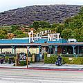 Neptune's Net by Lynn Bauer