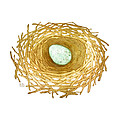 Nest And Egg by Catherine Noel