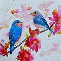 Nesting Pair by Beverley Harper Tinsley