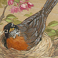Nesting Robin by Tracie Thompson