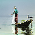 Net Fishing On Inle Lake by Claude LeTien