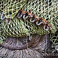 Nets And Knots Number Three by Elena Nosyreva