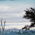 Nevada Blue by Bobbee Rickard