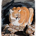Nevada Cougar by Darcy Tate
