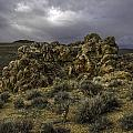 Nevada Desert Skies by Karen  W Meyer