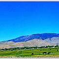Nevada Range by Bobbee Rickard
