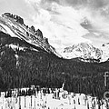 Never Summer Wilderness Area Panorama Bw by James BO Insogna