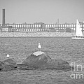 New Bedford Massachusetts Black White by Andrea Anderegg