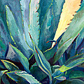 New Blue Agave by Athena Mantle Owen