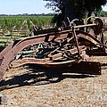 New Crop Antiquated Grader by Mary Deal