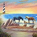 New Day - Hatteras by Fran Brooks