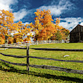 New England Farm With Autumn Sugar by Panoramic Images