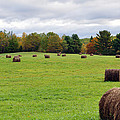 New England Hay Bales by Glenn Gordon