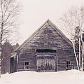 New Hampshire Barn In Black And White by Elizabeth Thomas